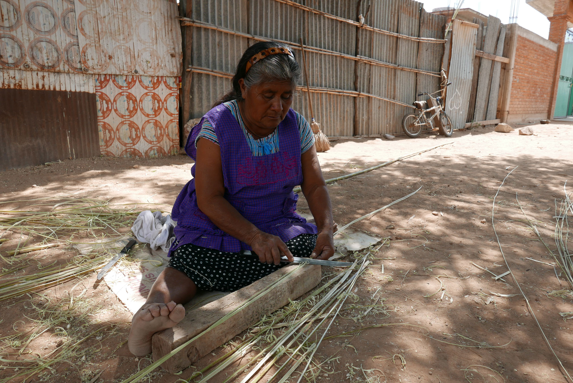 Artisan Cutting Carrizo Reeds Ready for Weaving Baskets in Oaxaca Mexico - www.nidocollective.com/carrizoweaving #carrizo #canastascarrizo #basketweaving