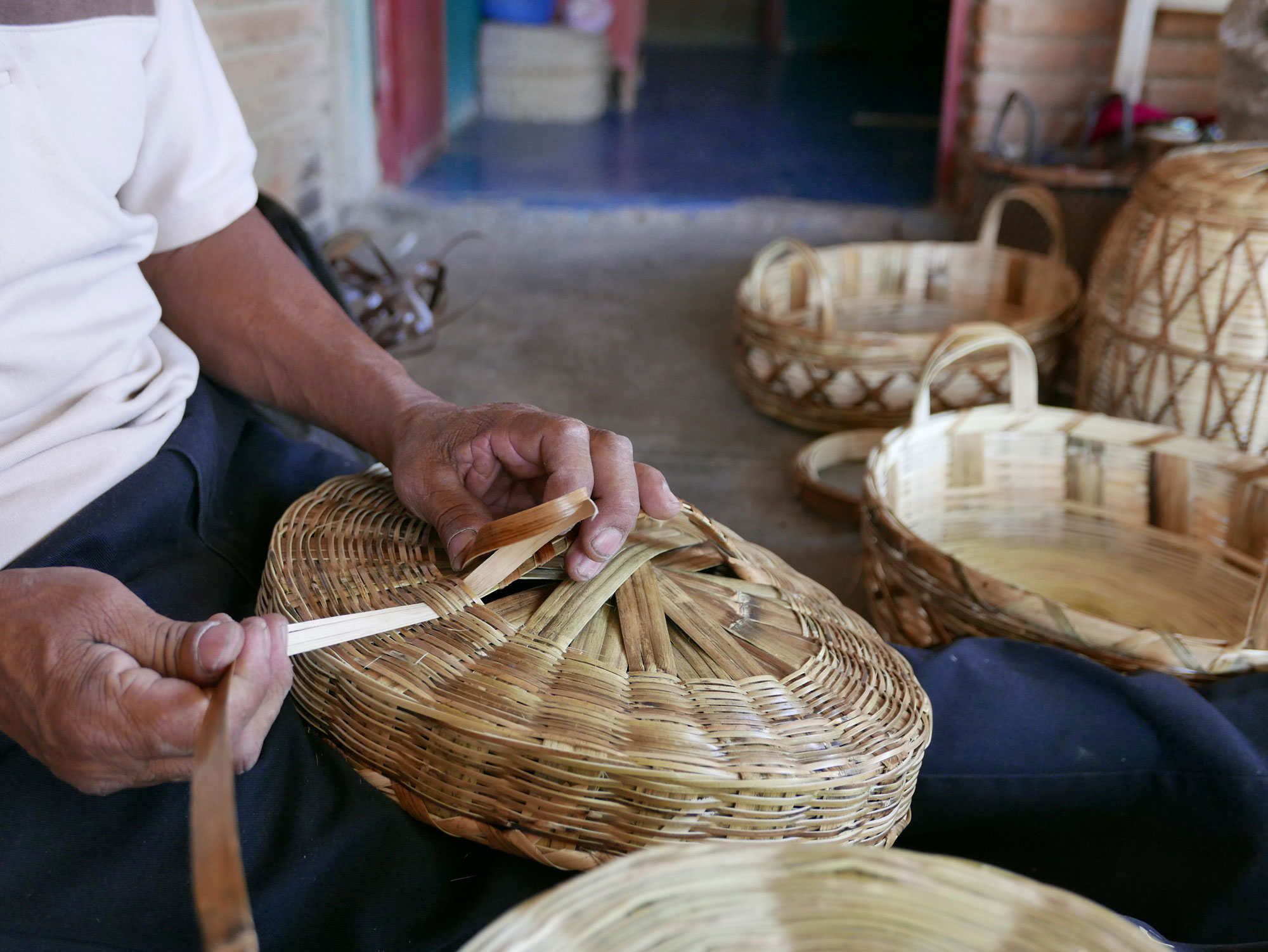 How to Weave a Basket in Oaxaca Mexico - www.nidocollective.com/carrizoweaving #carrizo #canastascarrizo #mexicanartisancrafts
