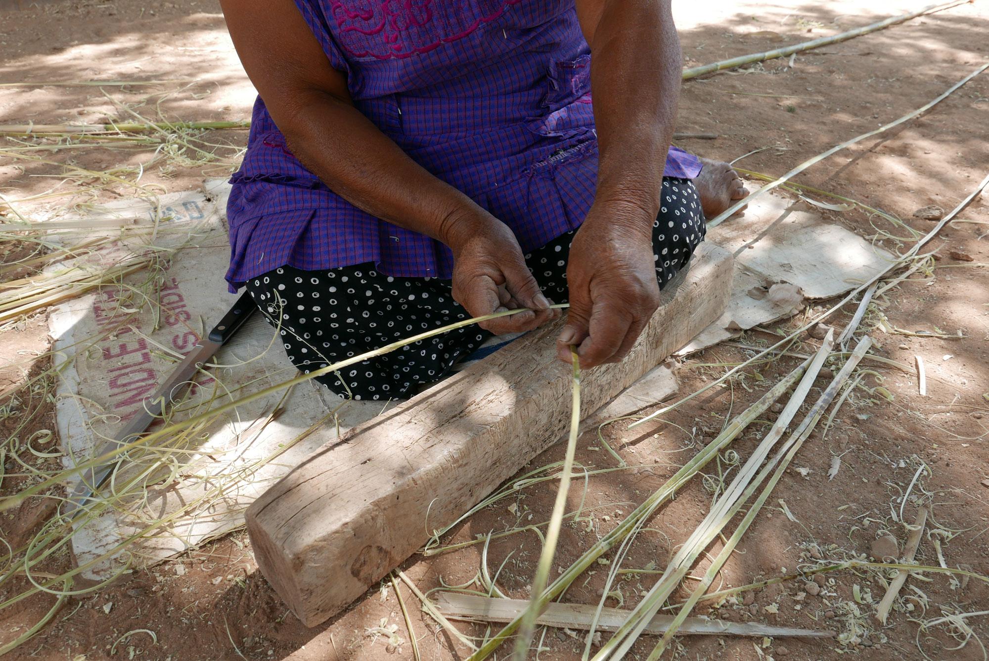 Artisan Splitting Carrizo Reeds Ready for Weaving Baskets in Oaxaca Mexico - www.nidocollective.com/carrizoweaving #carrizo #canastascarrizo #basketweaving
