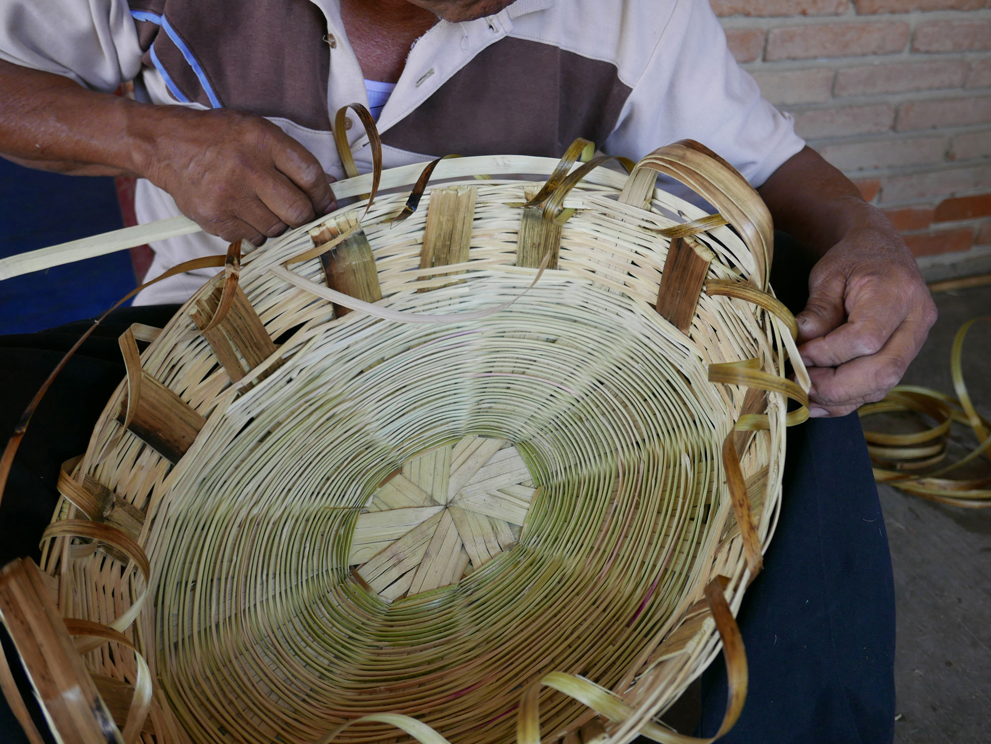 Basket Making using Carrizo Reeds in Oaxaca Mexico - www.nidocollective.com/carrizoweaving #carrizo #canastascarrizo #basketweaving